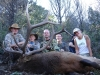 elk-deer-10-05-013