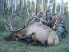 shawn-elk-07-011