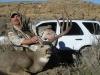 woody-deer-07-016